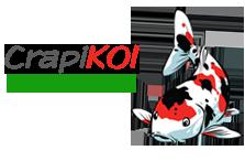 Iazuri-koi