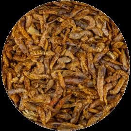 Hrana Koi naturala Creveti 2-4 cm  1 kg